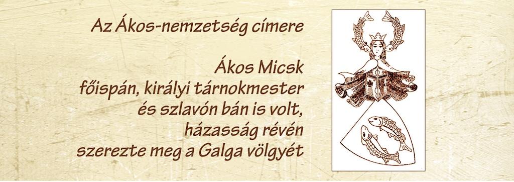 024micsk
